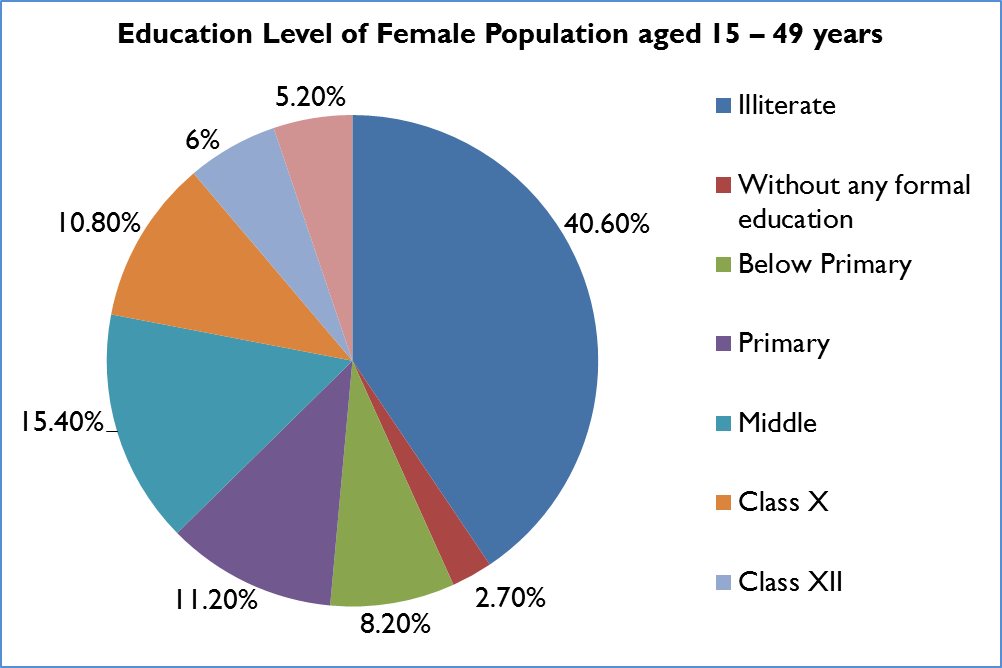adult female population