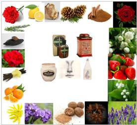 fragrance - iconic products, some ingredients 2
